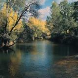 Río Guadalquivir 2